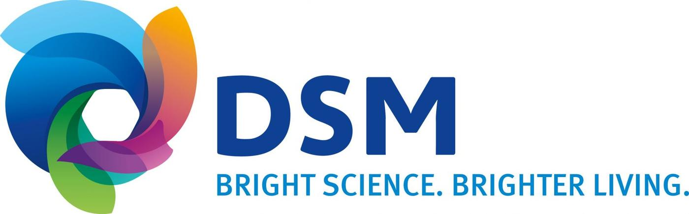 DSM Excursion